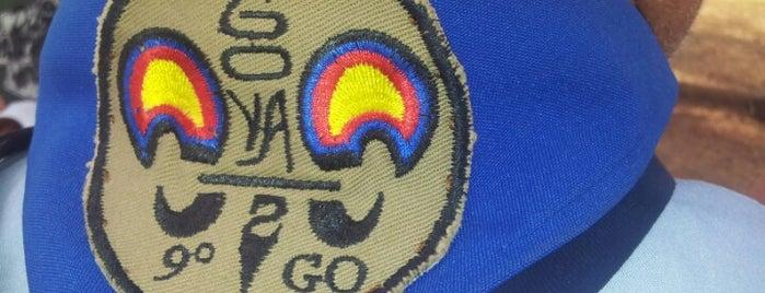 Grupo Escoteiro Goyaz - 9° GO is one of Utilidade Pública.