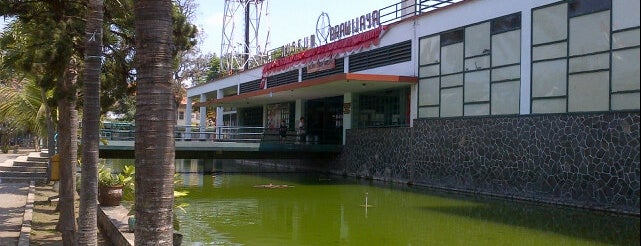 Museum Brawijaya is one of must to visit in malang city.