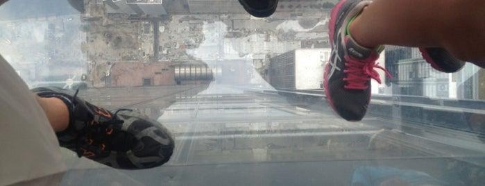 Willis Tower is one of Hipsqueak Awards Nominees.