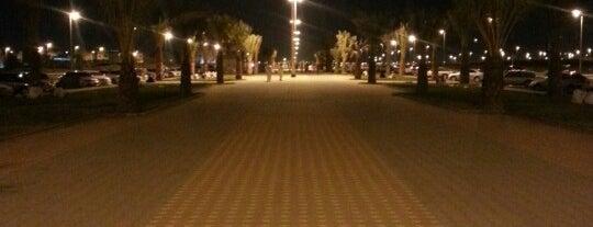 Al Hejrah Walk is one of Madinah.