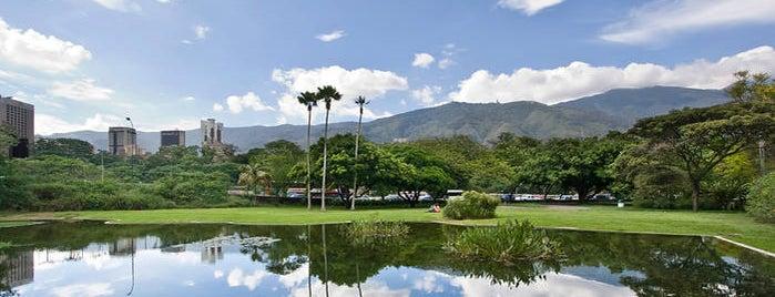 Jardín Botánico de Caracas is one of Caracas must.