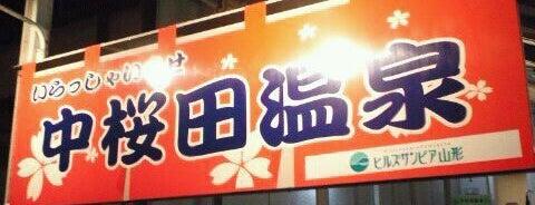 中桜田温泉 is one of 俺の日帰り温泉(仮).