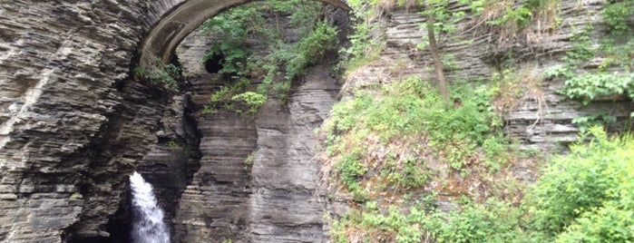 Watkins Glen State Park is one of NY Jets Training Camp.