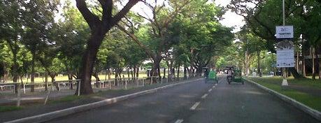 Ateneo de Manila University is one of Manila.