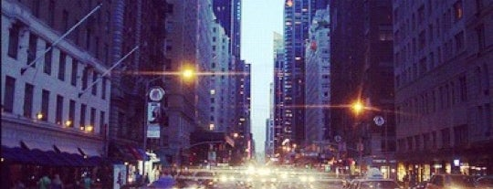 Fifth Avenue is one of New York for the 1st time !.