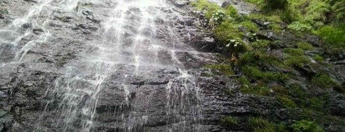 龍双ヶ滝 is one of 日本の滝百選.