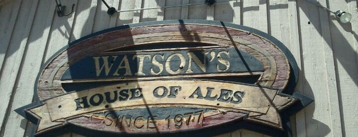 Watson's House of Ale's is one of houston nothing.