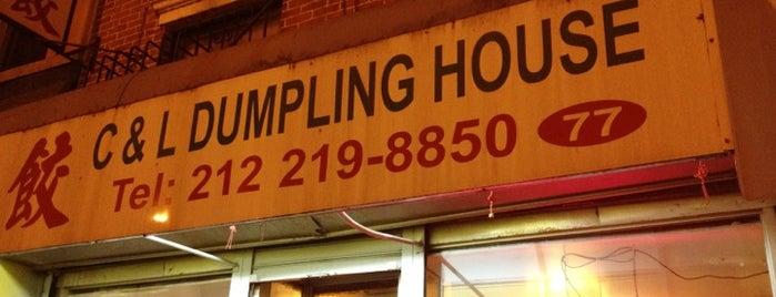 Chi Dumpling House is one of NYC's Best Dumplings.