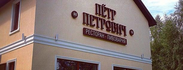 Пётр Петрович is one of Что посмотреть в Туле.