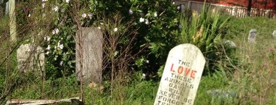 Presidio Pet Cemetery is one of San Francisco.