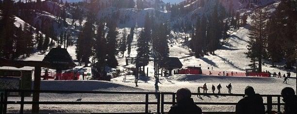Alpine Meadows Ski Resort is one of Top Ski Areas in Tahoe.