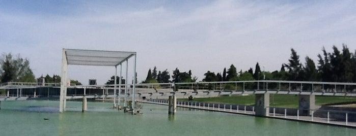 Parque da Cidade is one of VISITAR Beja.