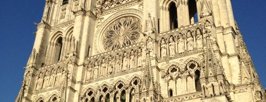 Cathedral Basilica of Our Lady of Amiens is one of Eglises.