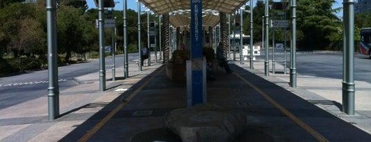 Palo Alto Transit Center: VTA, SamTrans, etc is one of Café.
