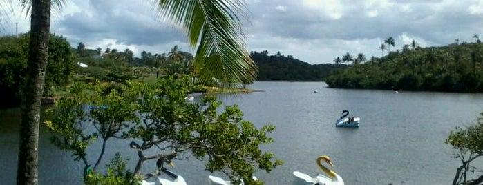 Parque Metropolitano de Pituaçu is one of Points de Salvador.