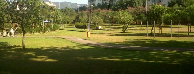 Praça dos caes is one of y.