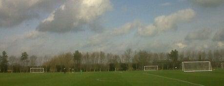Bodymoor Heath Training Ground is one of Top 10 favorites places in Birmingham, UK.