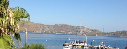 Palmetto Resort Hotel is one of muğla 14.