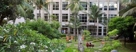 Universidade Católica de Pernambuco is one of Estudo.