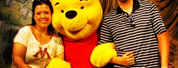 Winnie the Pooh Meet And Greet is one of Walt Disney World.