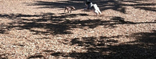 Oberrieder Dog Park is one of For K9 friends in SFValley+.