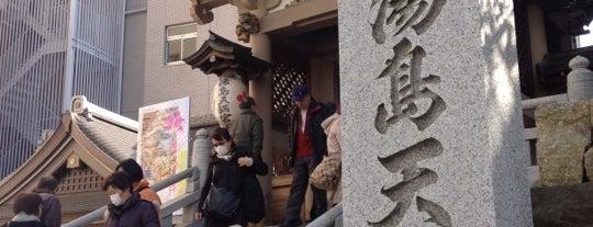 Yushima Tenmangu Shrine is one of 2009.03 Kanagawa Tiba Tokyo.