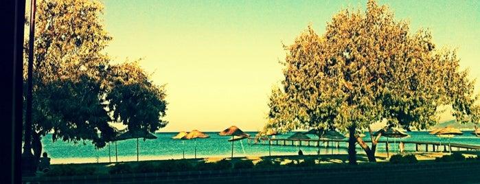 Altınkum Plajı is one of doğallık..