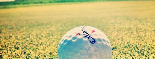 Encin Golf Hotel is one of Mis hoteles favoritos.