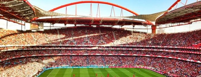 Estádio do Sport Lisboa e Benfica is one of Lisboa.