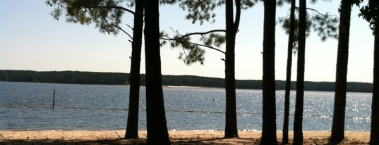 Jordan Lake State Recreation Area is one of Raleigh's Best Parks, Greenways & Gardens.
