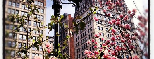 Union Square Park is one of Park Highlights of NYC.