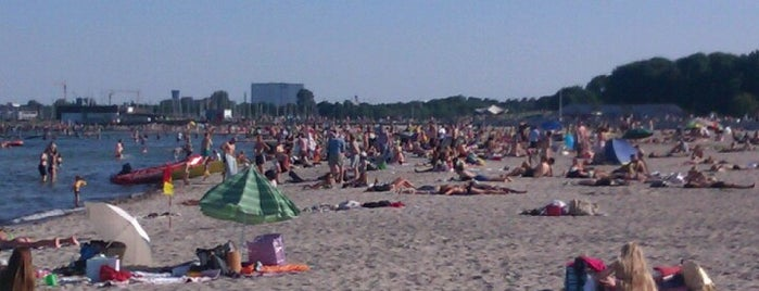 Amager Strandpark is one of Orte, die Turovtseva gefallen.