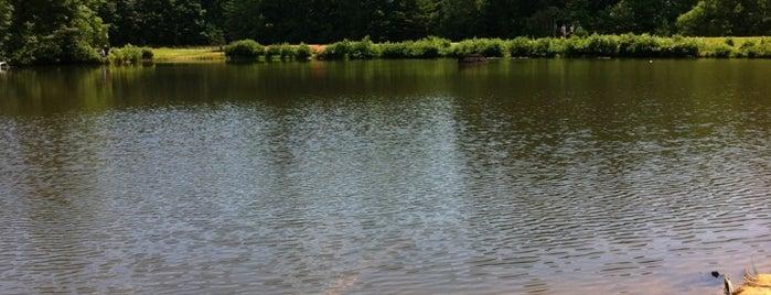 Reedy Creek Park is one of Footprints in charlotte.