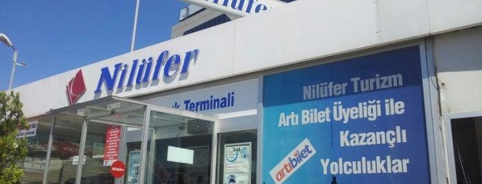 Nilüfer Turizm Terminal is one of Gokay.