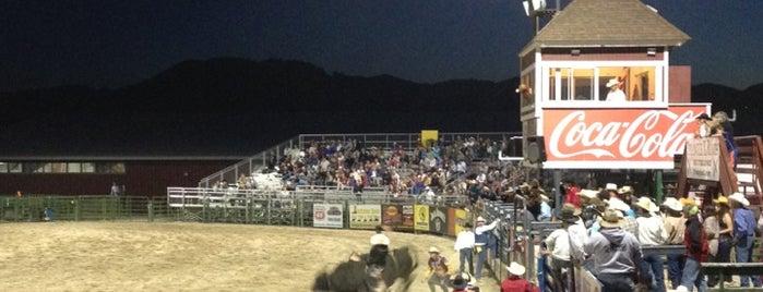 Jackson Hole Rodeo is one of Jackson.