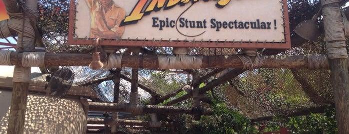 Indiana Jones Epic Stunt Spectacular! is one of my traveling adventures.