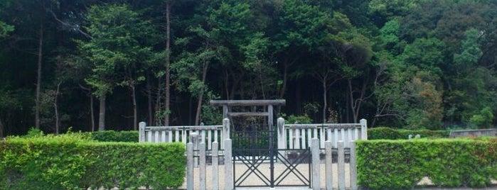 平城天皇 楊梅陵 (市庭古墳) is one of 天皇陵.