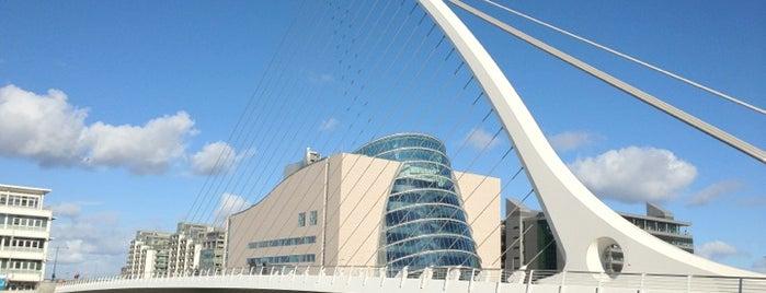 Samuel Beckett Bridge is one of Dublin Tourist Guide.
