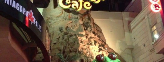 Rainforest Cafe is one of Niagara.