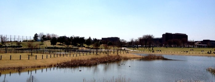 Musashino-no-mori Park is one of 歴史(明治~).