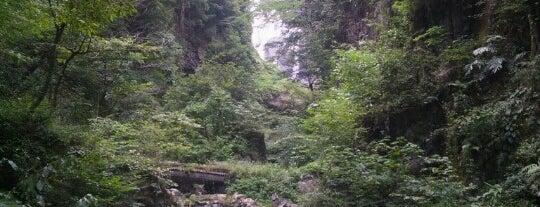 神庭の滝 is one of 日本の滝百選.