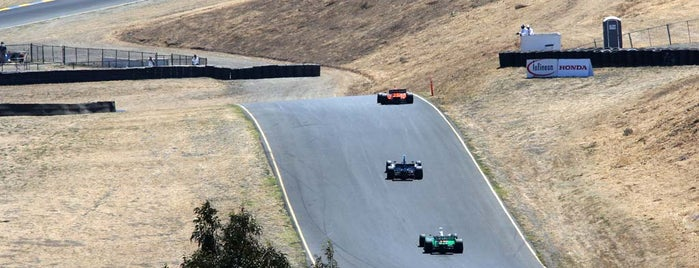 Sonoma Raceway is one of My NASCAR Cup Series Trip List.