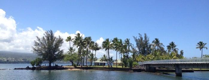 Coconut Island Park is one of Big Island.