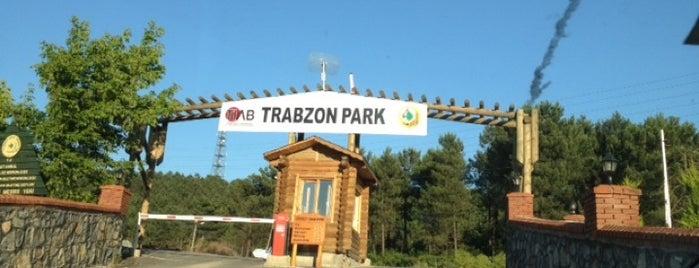 Trabzon Park is one of kaydedilenler.