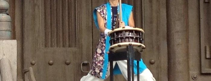 Matsuriza Taiko Drummers is one of Walt Disney World - Epcot.