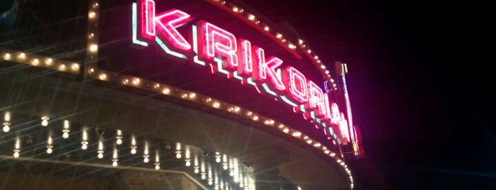Krikorian Premiere Theatres is one of Rise & Shine Film Screening Locations.