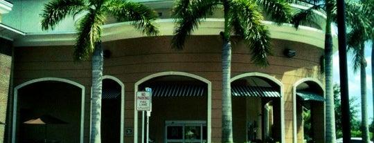 Publix is one of Florida Favorite *Eats & Treats*.