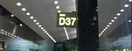 Gate D37 is one of SIN Airport Gates.