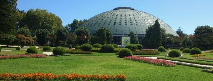 Jardins do Palácio de Cristal is one of To-do / Porto.