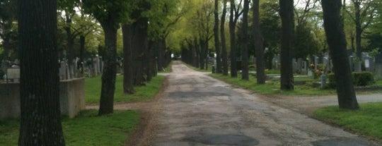 Zentralfriedhof is one of StorefrontSticker #4sqCities: Vienna.